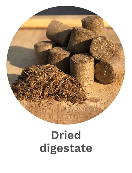 Dried digestate
